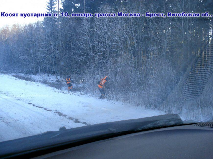 Переехать в белоруссию на пмж отзывы 2021